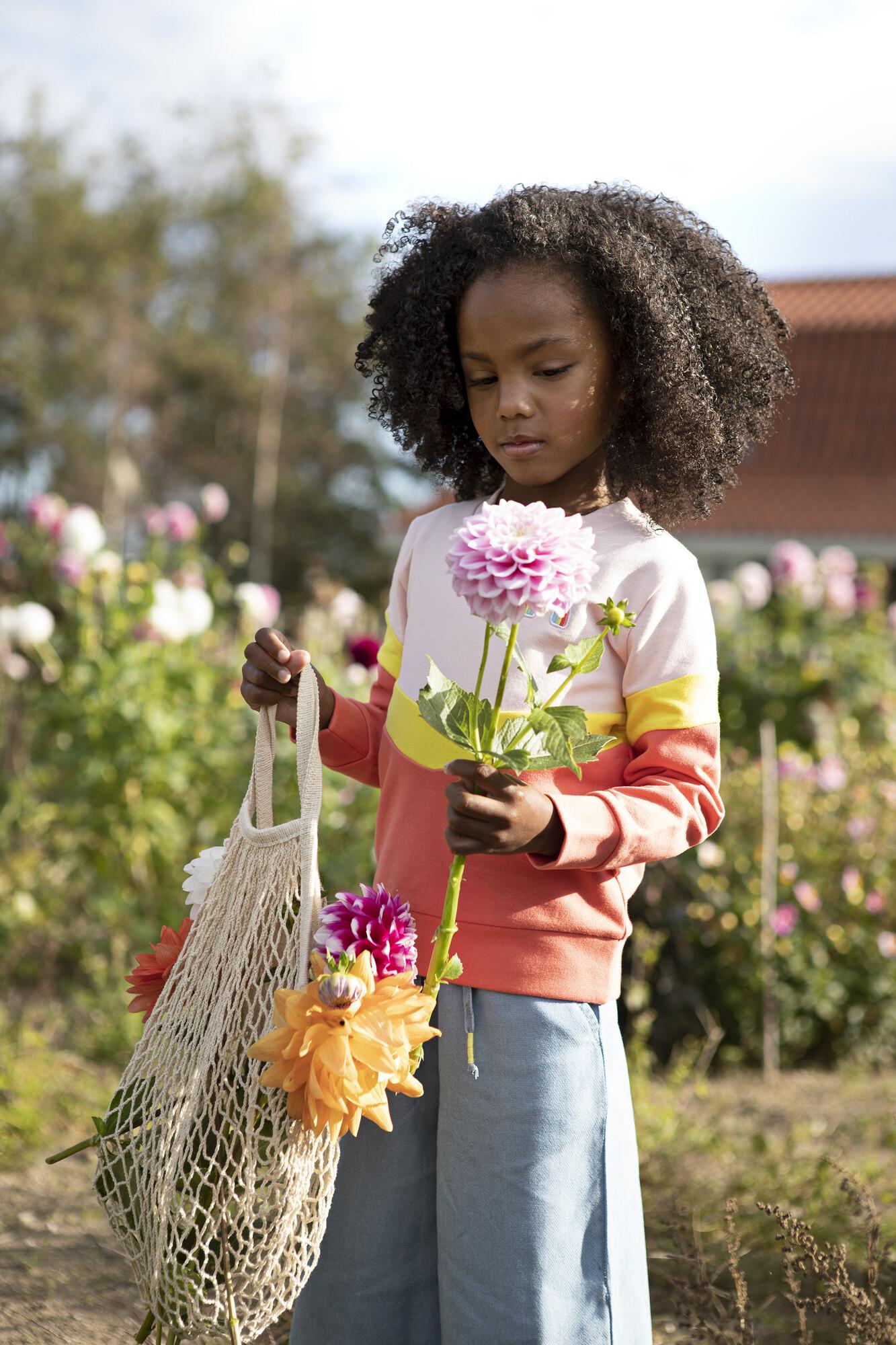 Someone kindermode : meisje met driekleurige trui en jeansbroek in bloemenveld.